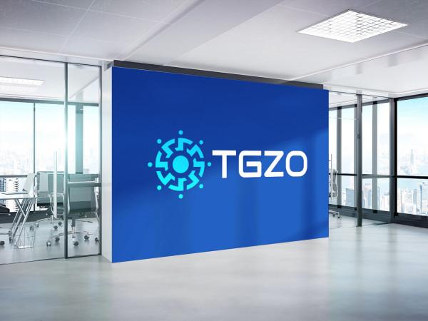 Sample branding #2 for Tgzo