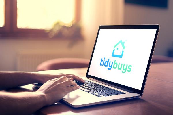 Sample branding #3 for Tidybuys