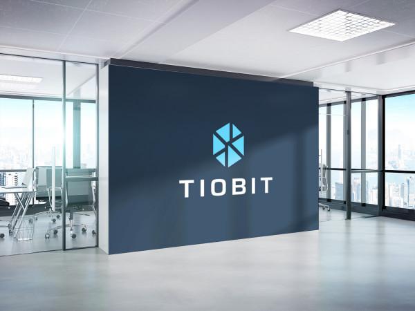 Sample branding #2 for Tiobit