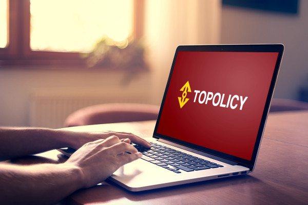 Sample branding #2 for Topolicy