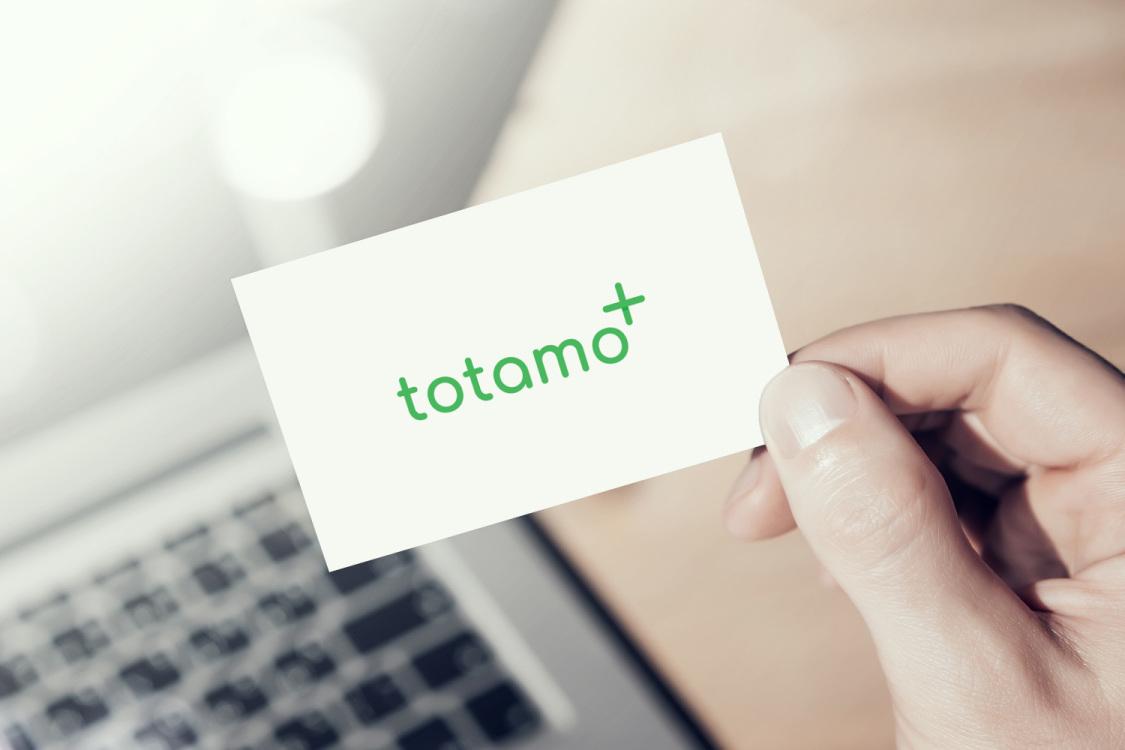 Sample branding #2 for Totamo