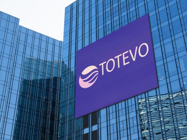 Sample branding #3 for Totevo