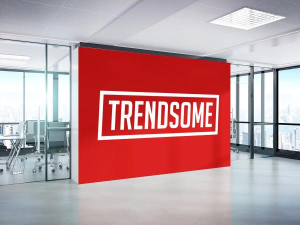 Sample branding #3 for Trendsome