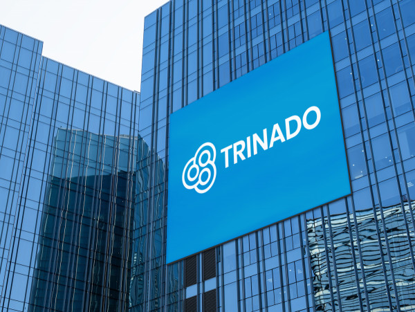 Sample branding #2 for Trinado