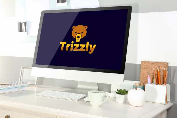 Sample branding #2 for Trizzly