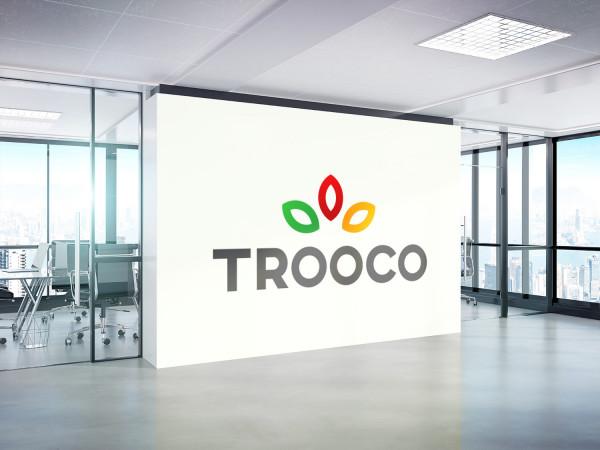 Sample branding #1 for Trooco