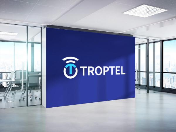 Sample branding #2 for Troptel