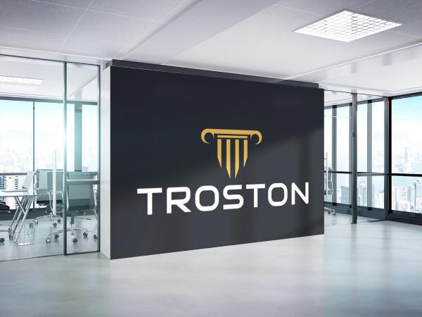 Sample branding #1 for Troston