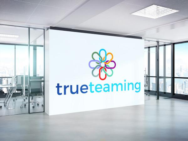 Sample branding #1 for Trueteaming
