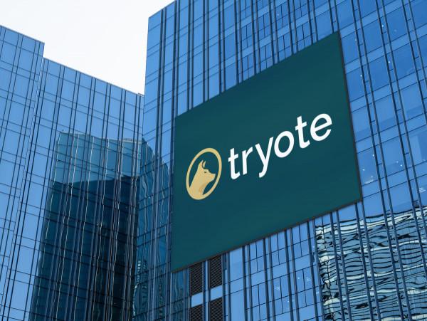 Sample branding #3 for Tryote