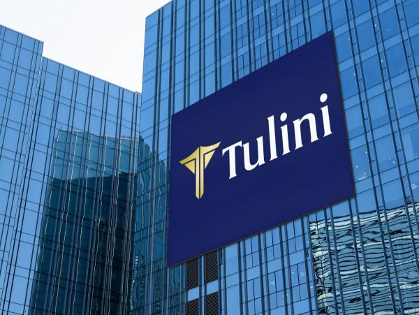 Sample branding #2 for Tulini