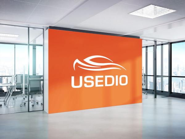 Sample branding #2 for Usedio