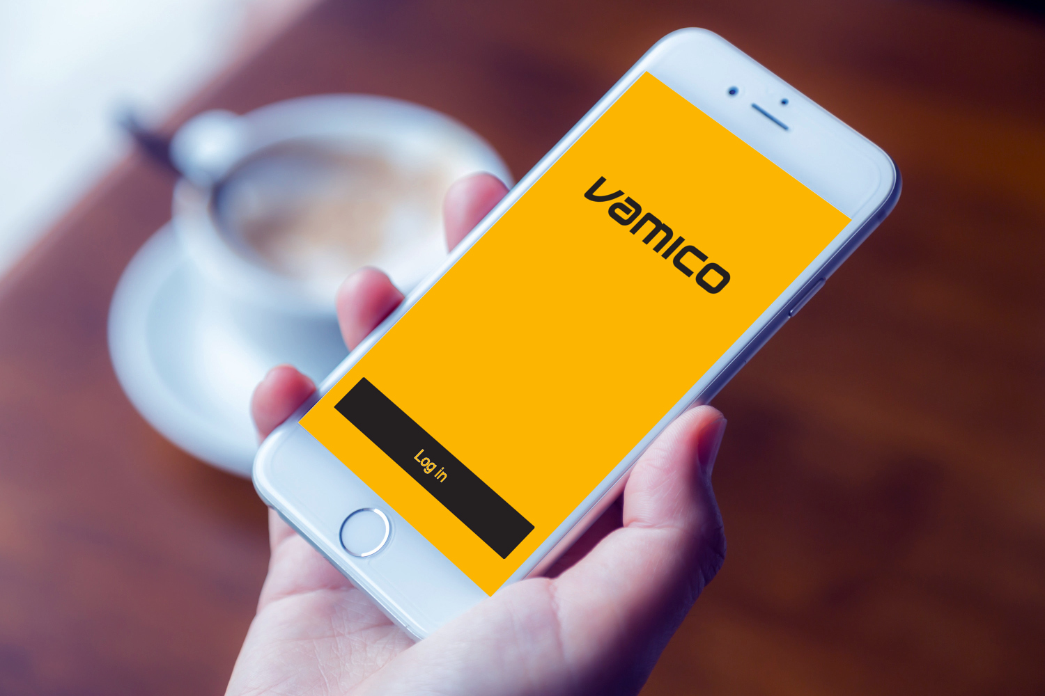Sample branding #1 for Vamico