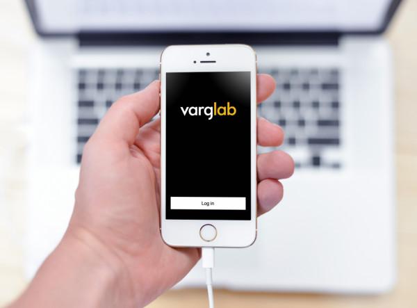 Sample branding #1 for Varglab
