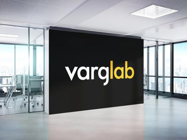 Sample branding #3 for Varglab