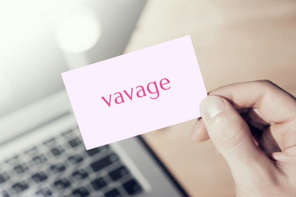 Sample branding #1 for Vavage