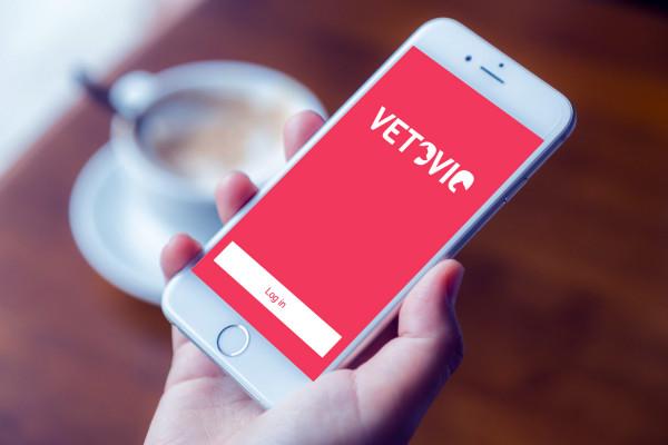 Sample branding #3 for Vetovio