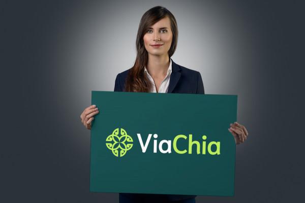 Sample branding #2 for Viachia