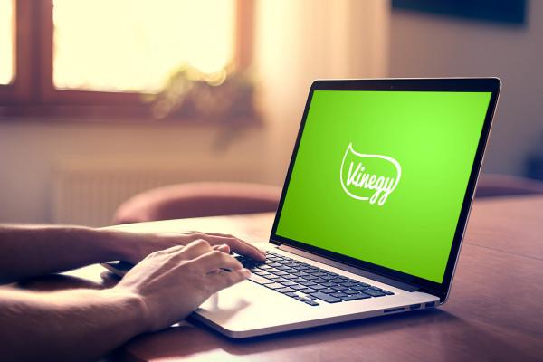 Sample branding #3 for Vinegy