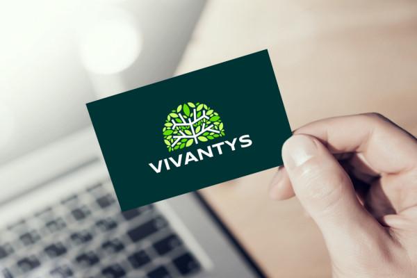 Sample branding #2 for Vivantys
