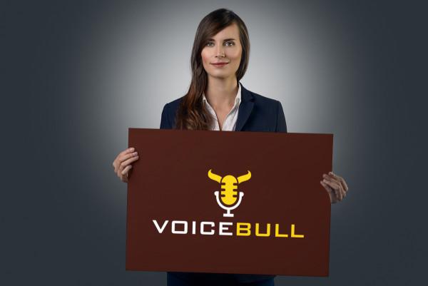 Sample branding #1 for Voicebull