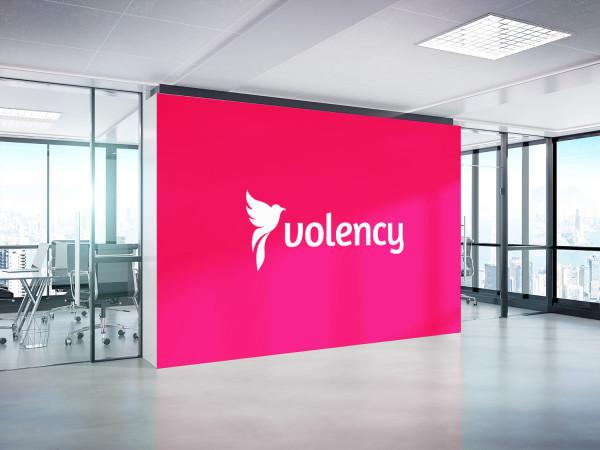 Sample branding #2 for Volency
