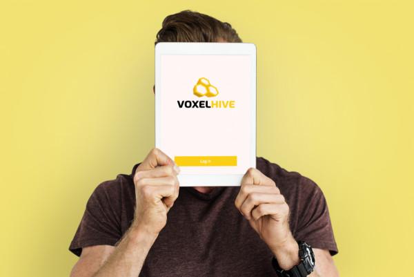 Sample branding #3 for Voxelhive
