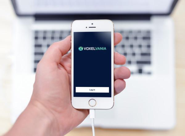 Sample branding #1 for Voxelvania