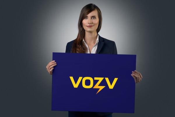 Sample branding #1 for Vozv