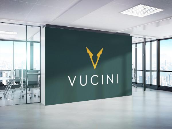 Sample branding #2 for Vucini