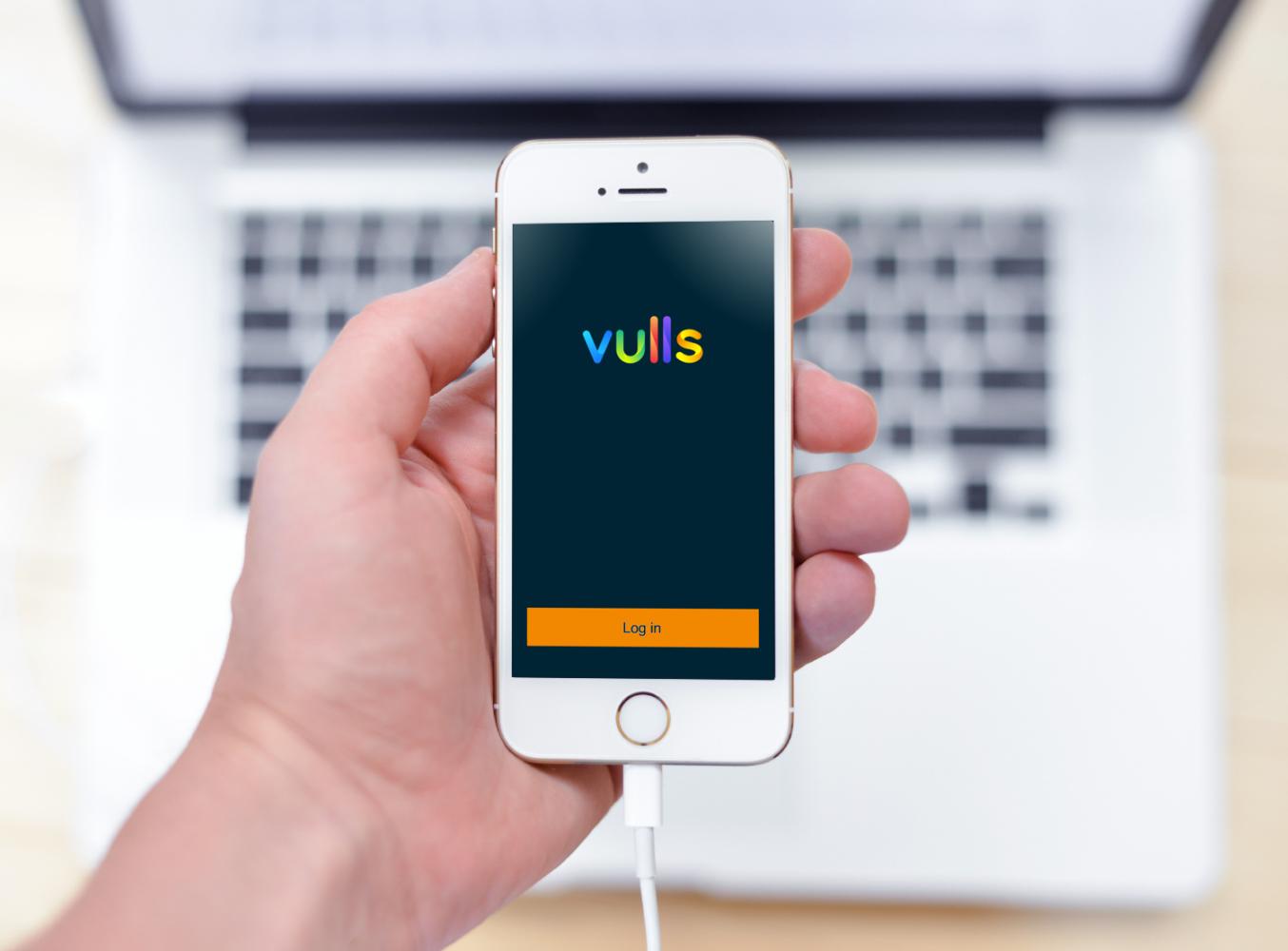 Sample branding #3 for Vulls