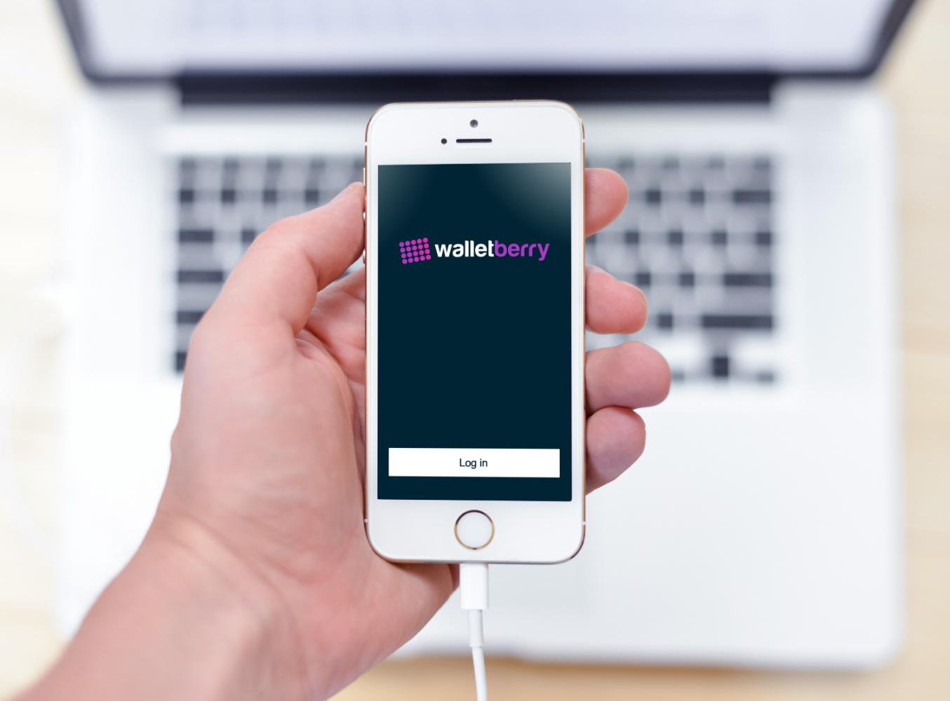 Sample branding #1 for Walletberry