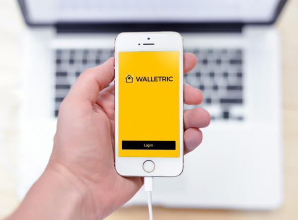 Sample branding #2 for Walletric