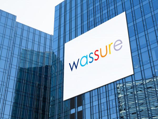 Sample branding #1 for Wassure