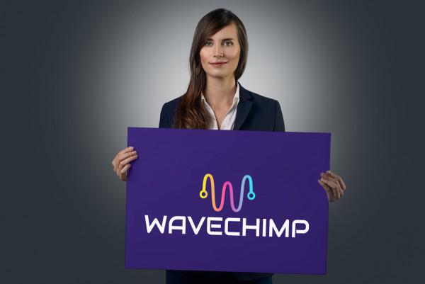 Sample branding #1 for Wavechimp
