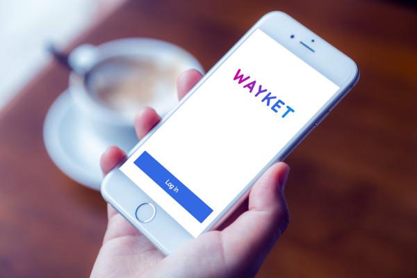 Sample branding #1 for Wayket