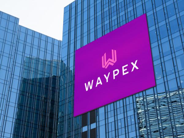 Sample branding #3 for Waypex