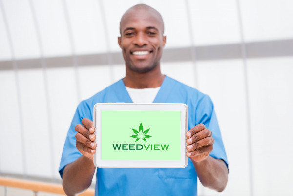Sample branding #1 for Weedview