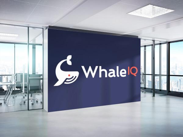 Sample branding #3 for Whaleiq