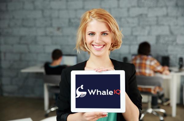 Sample branding #2 for Whaleiq