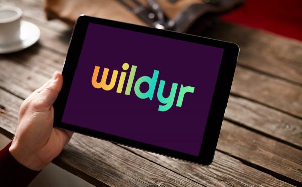 Sample branding #3 for Wildyr