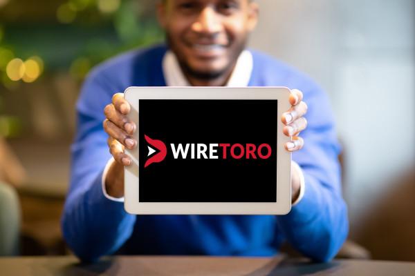 Sample branding #2 for Wiretoro