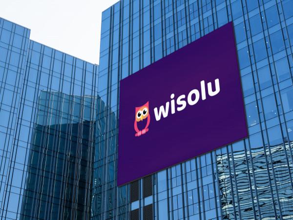 Sample branding #3 for Wisolu