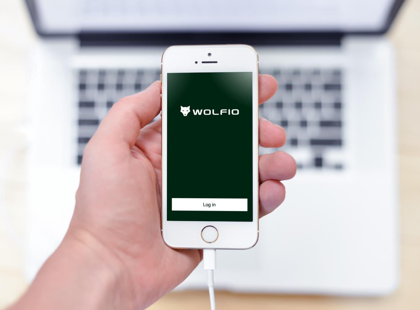 Sample branding #1 for Wolfio