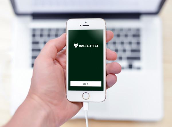 Sample branding #3 for Wolfio