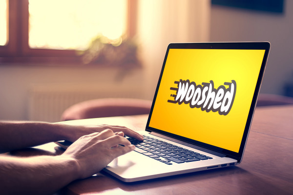 Sample branding #1 for Wooshed