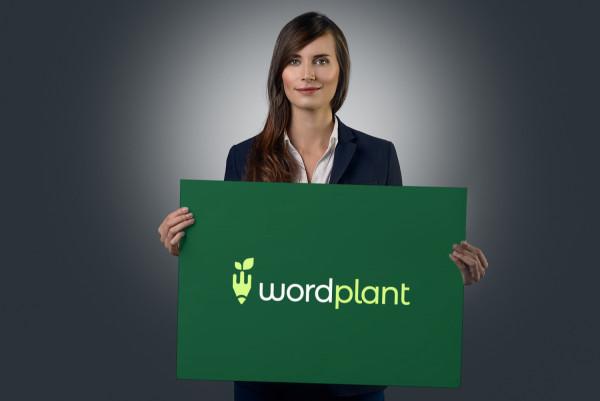 Sample branding #2 for Wordplant