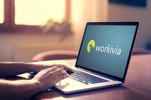 Sample branding #1 for Workivia