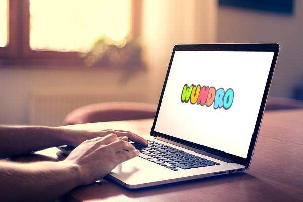 Sample branding #3 for Wundro