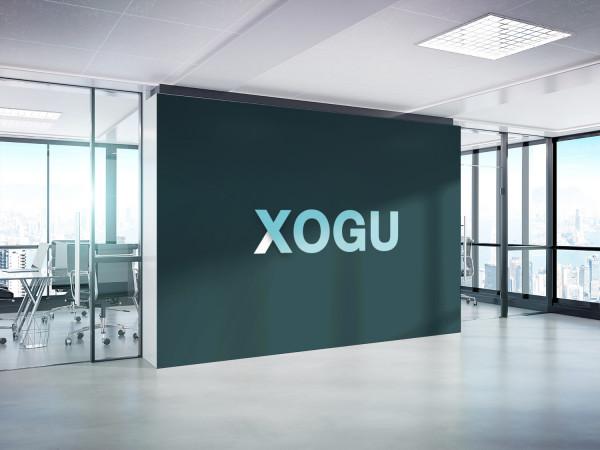 Sample branding #1 for Xogu